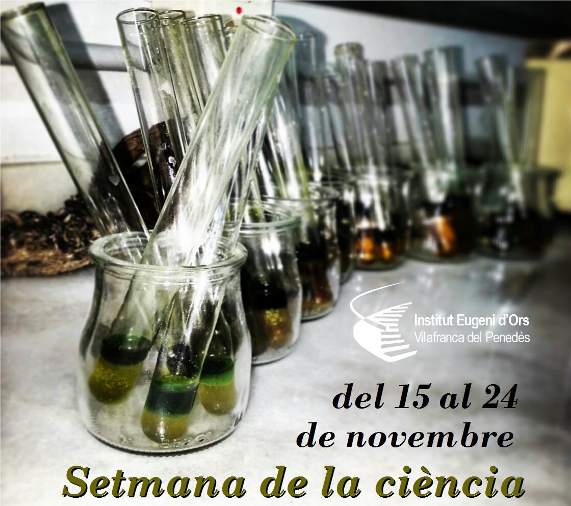 cartellsetmciencia2013